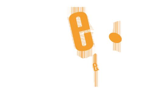 Logo Klant Dees Deesign